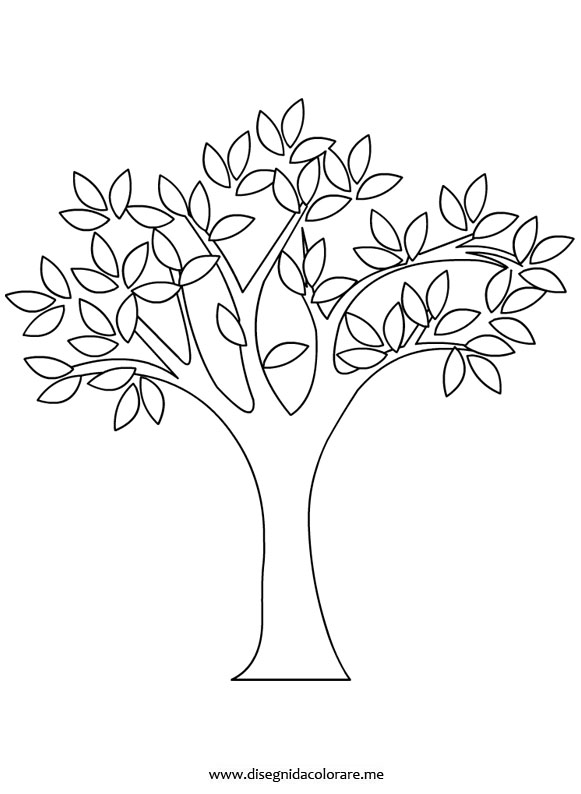 disegno-albero-primavera