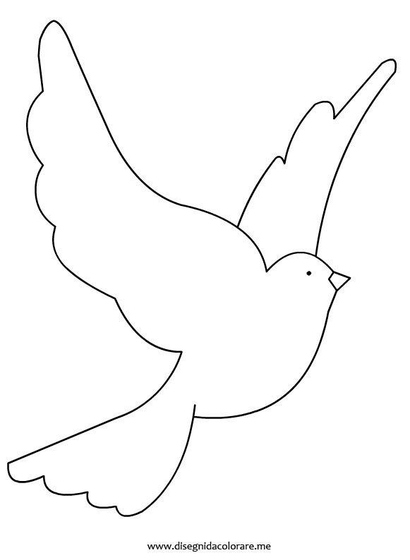 disegno-colomba