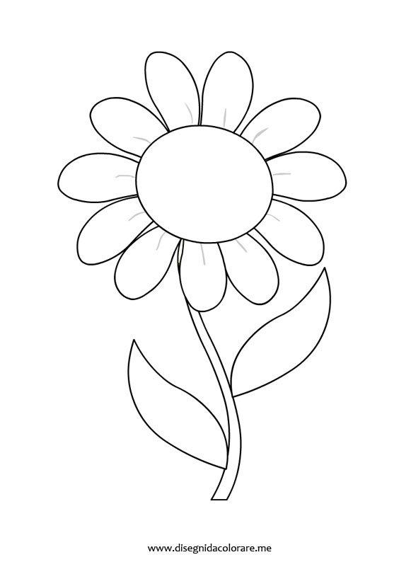 fiore-margerita
