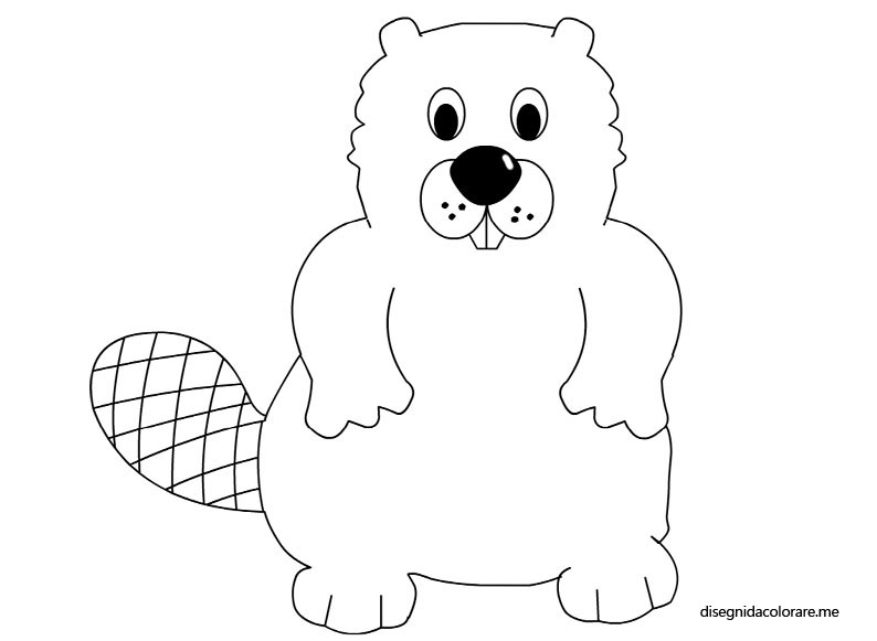Castoro da colorare disegni da colorare for Disegno orso per bambini
