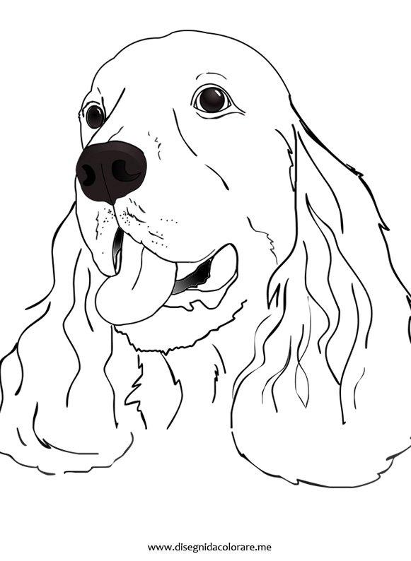 Cane da colorare cocker disegni da colorare for Disegni da stampare e colorare di cani