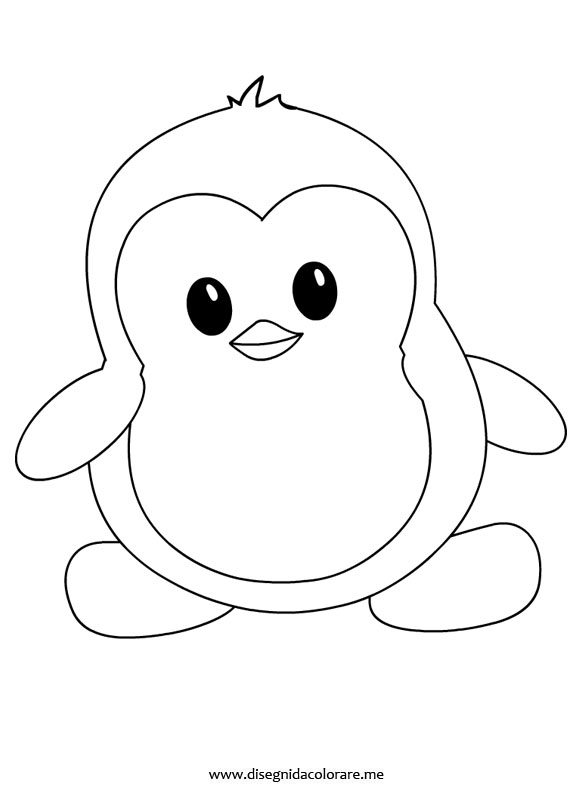 pinguino-piccolo