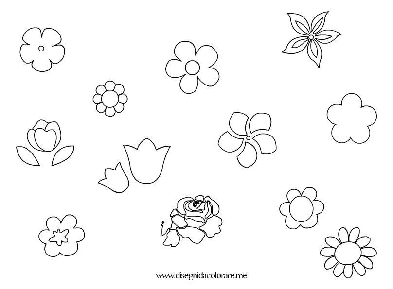 fiori-piccoli