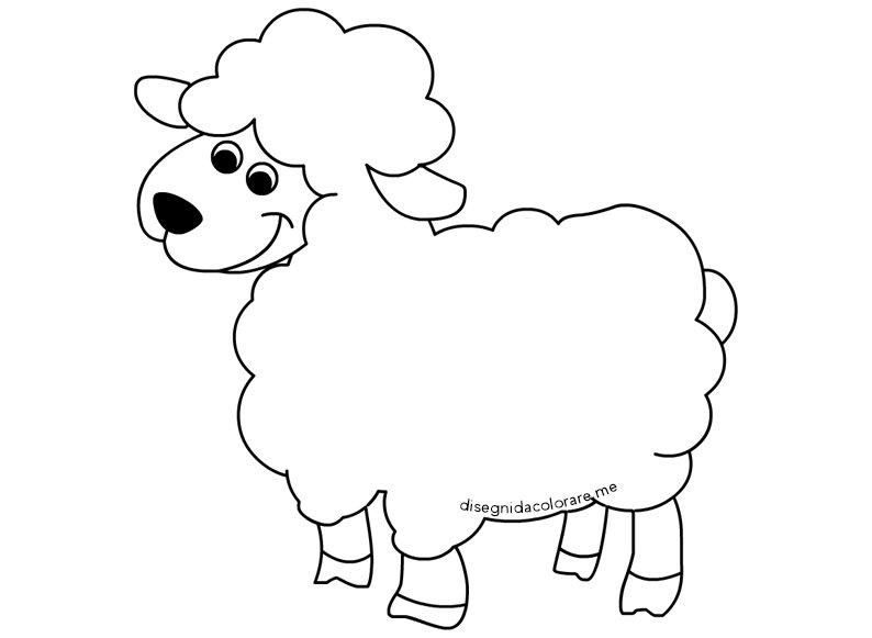 disegno-agnello
