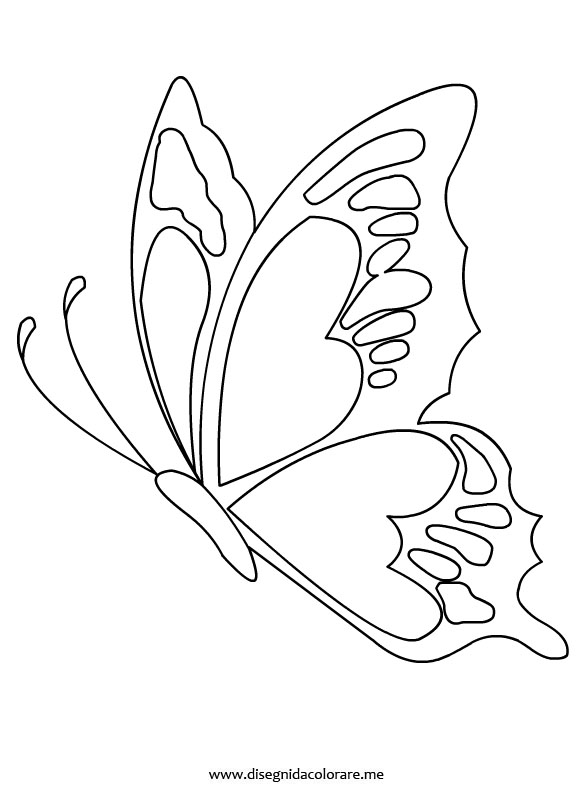 Farfalla disegni da stampare e colorare disegni da for Disegni da stampare e colorare fiori