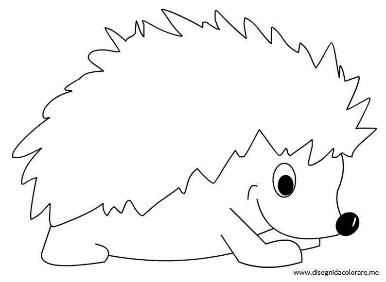 Riccio da colorare disegni da colorare - Come disegnare un cartone animato di gufo ...