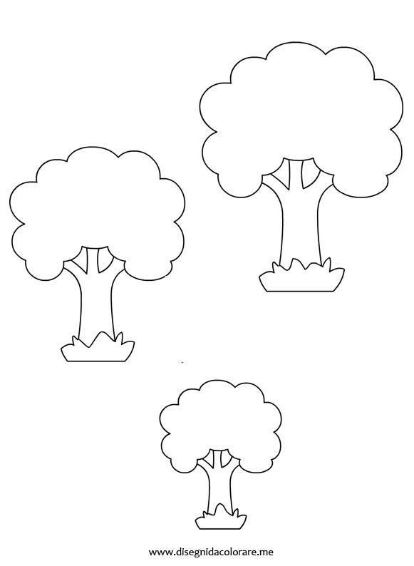 Alberi di varie dimensioni disegni da colorare for Foto di alberi da colorare
